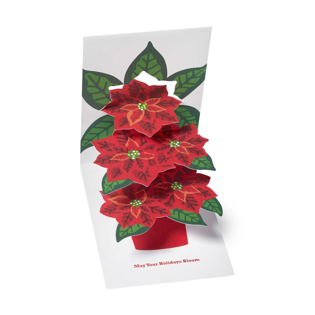 MoMA クリスマスカード ポインセチア (8枚セット)の商品画像
