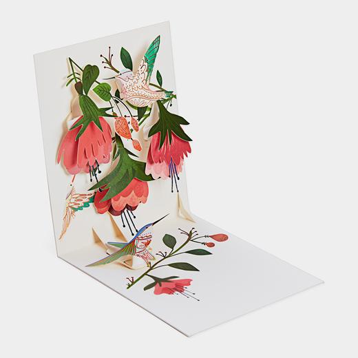 ポップアップカード ハミングバードの商品画像