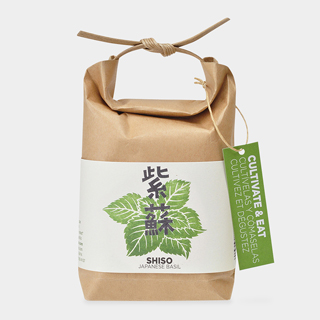 Rice Bag 栽培キット 青じそ