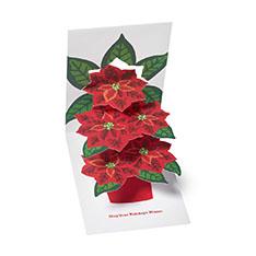 MoMA クリスマスカード ポインセチアの商品画像