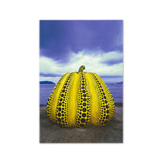 草間彌生:ポストカード 南瓜の商品画像